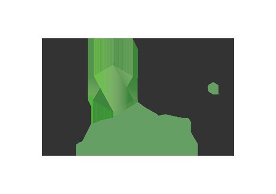 Node JS Logo